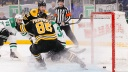 Boston Bruins right wing David Pastrnak (88) scores goal past Dallas Stars