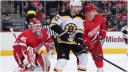 Bernier Red Wings Bruins